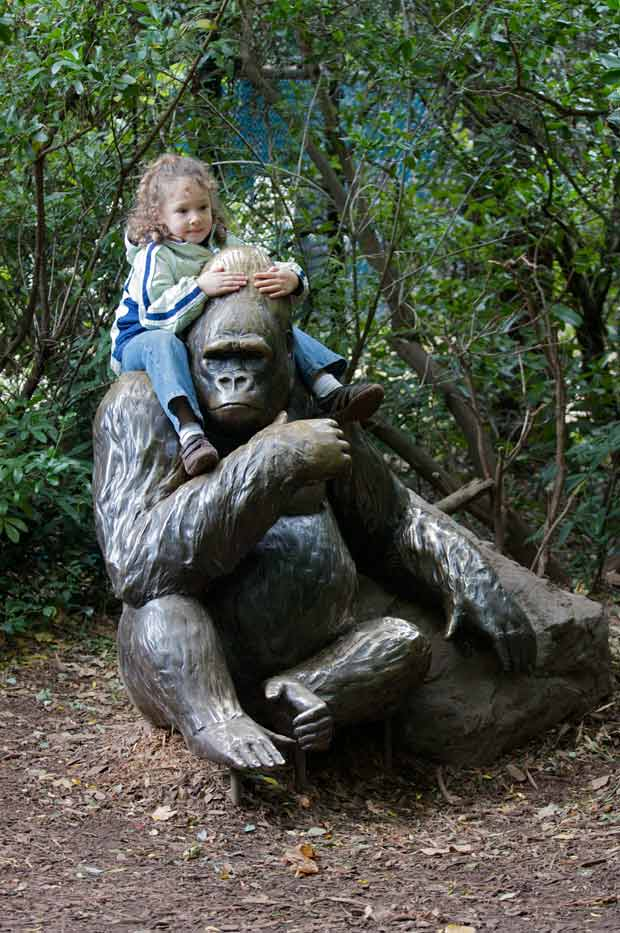 Lael Riding Gorilla Statue