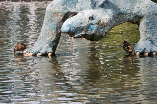 Ducks under stegosaurus statue