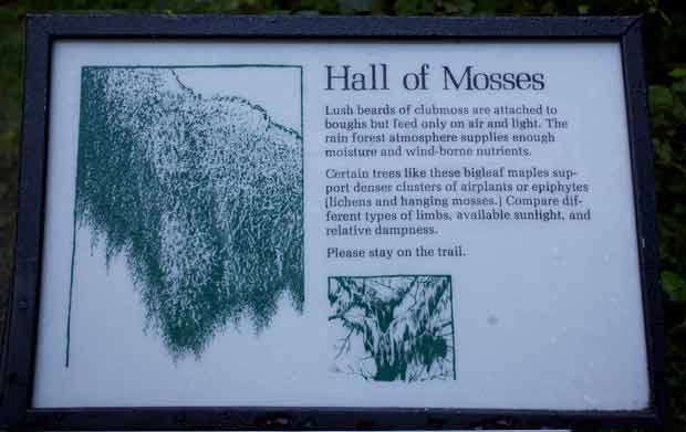 Hall of Mosses Sign