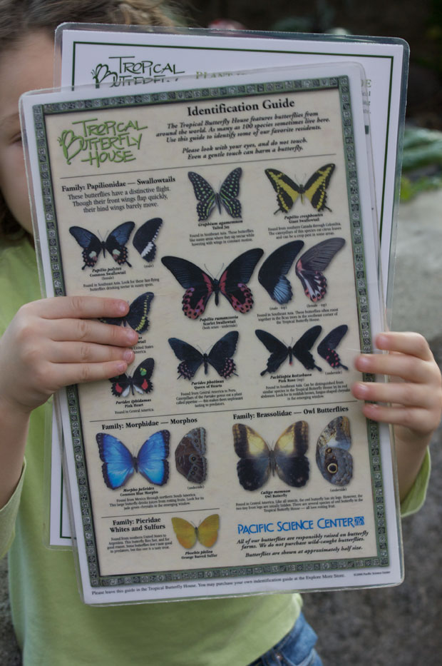 Lael With Butterfly Guide