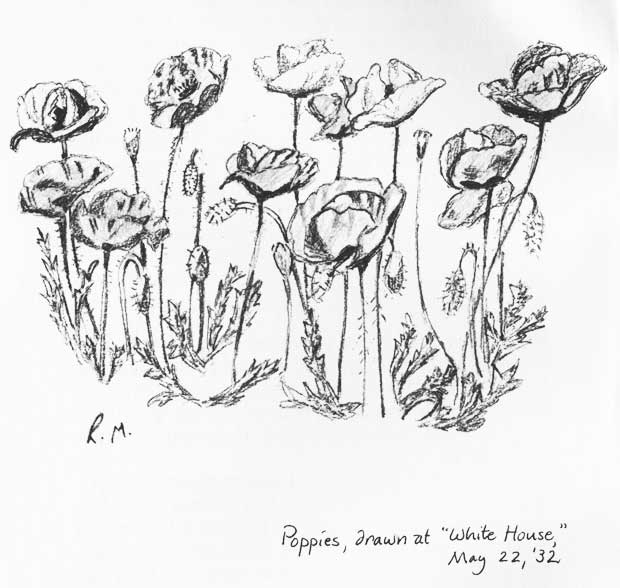 May's Poppies Sketch