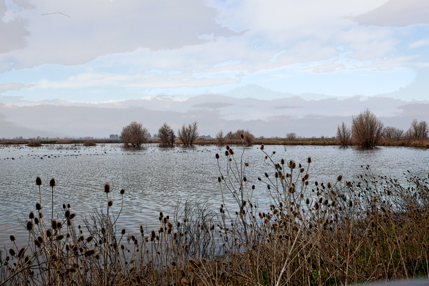 The Sacramento National Wildlife Refuge