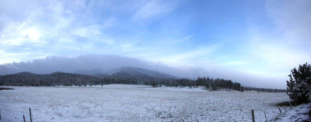 Snow Dusted Meadow