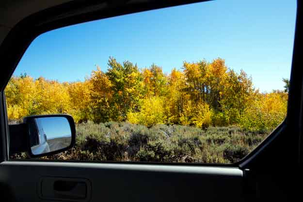 Aspen through Car Window