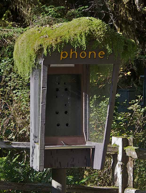 Hoh Phone Booth