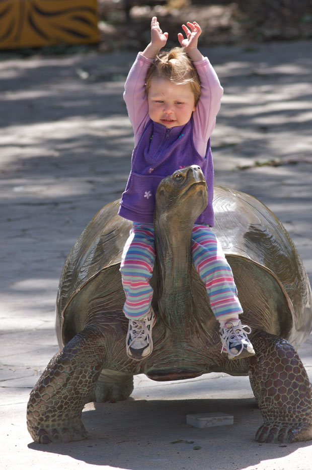 Girl Riding Turtle Statue